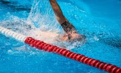 Schwimm-Weltmeisterschaft in Kazan (Kasan) Russland 2015